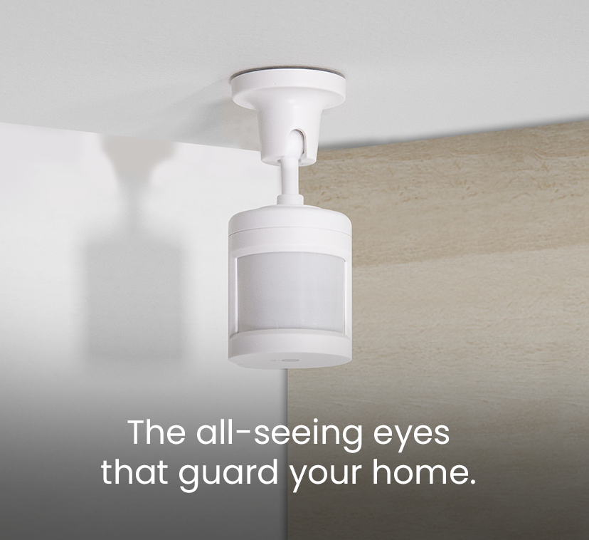 The all-seeing eyes <br />that guard your home.